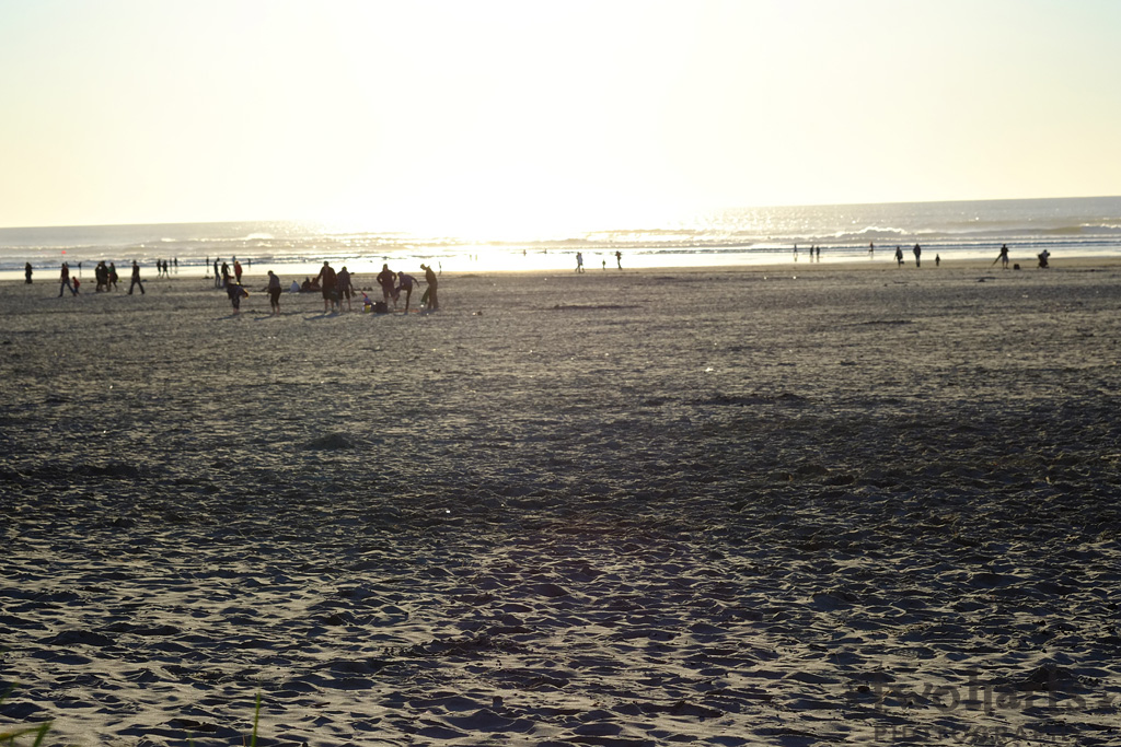 sunset photo of beach showing silhouettes of people